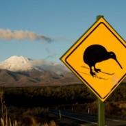 Dove lavorare all'estero? Visti di lavoro in Nuova Zelanda